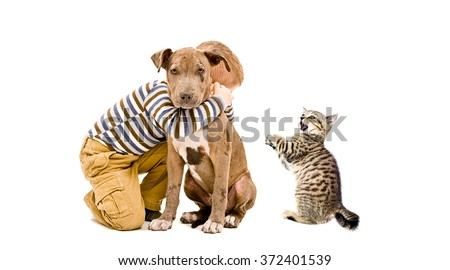 Affectionate boy, pitbull puppy and a kitten isolated on white background