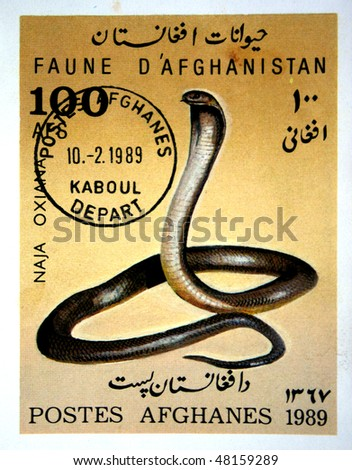 AFGHANISTAN - CIRCA 1988: A stamp printed in Afghanistan shows Central Asian Cobra - Naja Oxiana, circa 1988 - stock photo