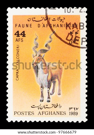 AFGHANISTAN - CIRCA 1989: The postal stamp printed in AFGHANISTAN show Markhor - Capra falconeri, series animals, circa 1989