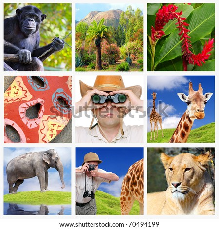 Africa collage composed of pictures with safari theme. - stock photo