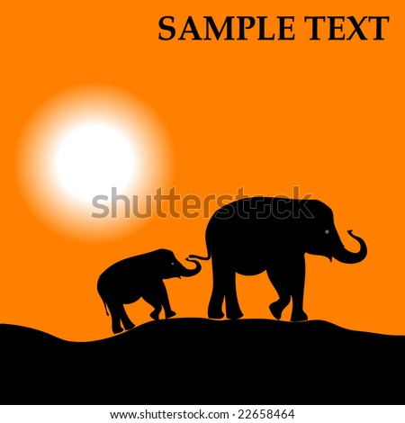Africa landscape with sundown and elephant background. Vector version is in my portfolio - stock photo
