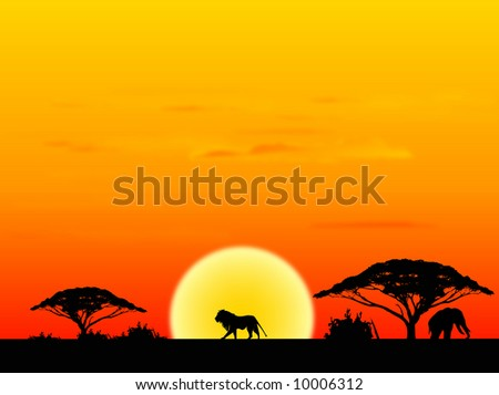 Africa landscape with sundown background - stock photo