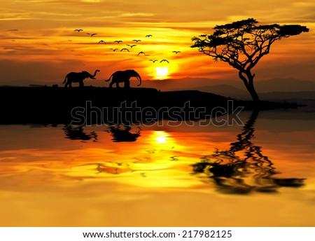 africa parading along the lake - stock photo