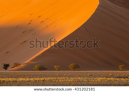 Africa. Red dunes of Namibia. Growth of temperature and climatic changes on Earth. Increase in the areas of deserts. - stock photo