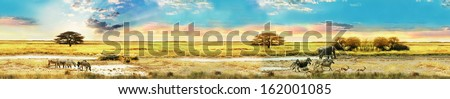 Africa. Wildlife. panorama. - stock photo
