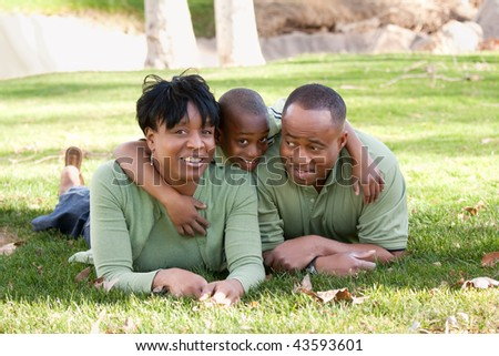 African American Family Enjoying a Day in the Park. - stock photo