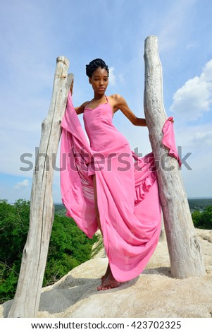 African American girl with dreadlocks, in a pink dress posing on a high hill near the tree against the sky and a beautiful landscape and looking at the camera. Vertical view - stock photo