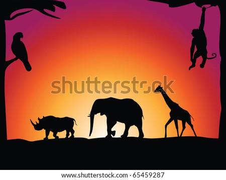 African animals - stock photo