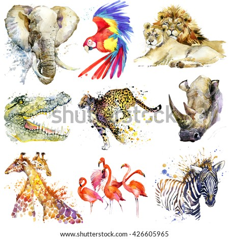 African animals set. Watercolor animal. Elephant, parrot, lion, crocodile, cheetah, rhino, giraffe, flamingos, zebra - stock photo