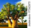 African baobabs - stock vector