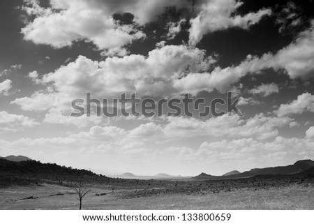 African beautiful landscape in Kenya in black and white - stock photo