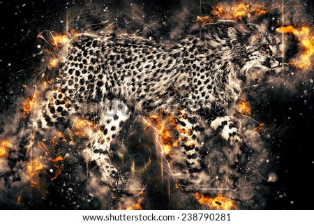 African cheetah illustration with fire - stock photo