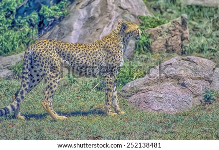 African cheetah in Tanzania, Serengeti plain