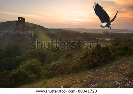 African fish eagle in flight over magical castle landscape - stock photo
