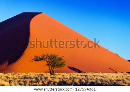 African landscape, beautiful sunset dunes and nature of Namib desert, Sossusvlei, Namibia, South Africa - stock photo