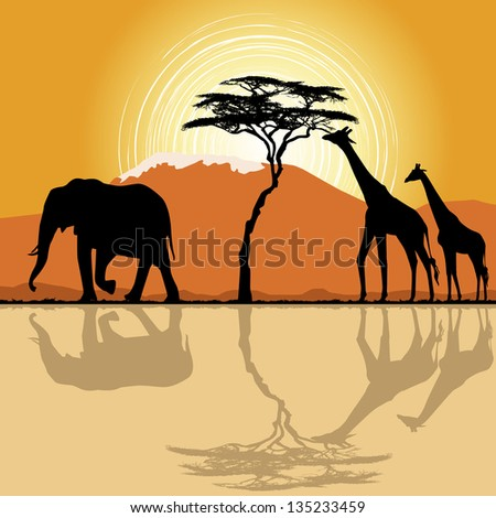 African landscape  in sunset time with giraffes and elephant - stock photo