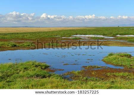 African landscape lake Amboseli Kenya - stock photo