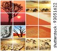 african landscapes collage - stock photo