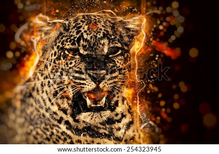 African leopard illustration with fire - stock photo