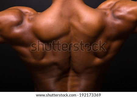 african muscular bodybuilder's back on black background - stock photo