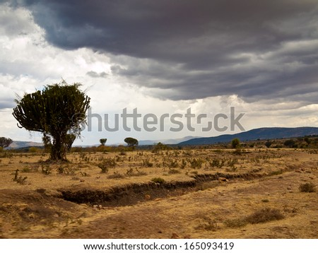 African savanna front of rain - stock photo