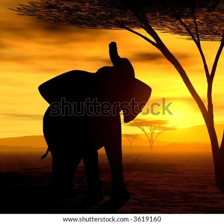 African Spirit - The Elephant - stock photo