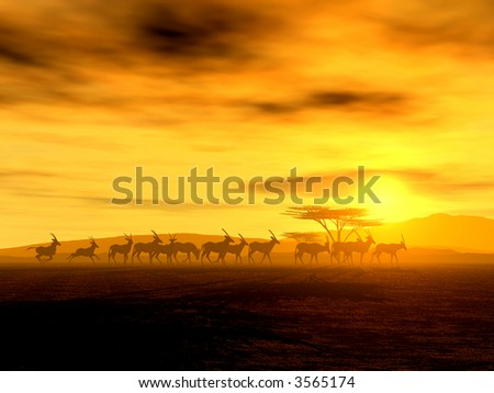 African Spirit - The Walking Tour of African Antelopes - stock photo