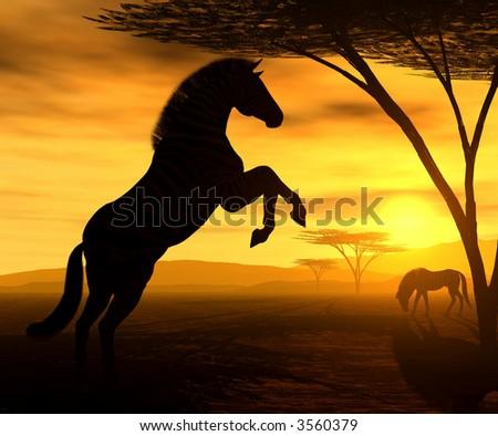 African Spirit - The Zebra - stock photo