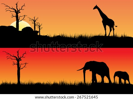 African sunset one with elephants other with a  giraffe - stock photo