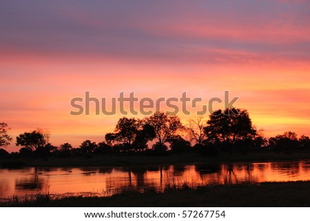 African Sunset with Hippos - stock photo