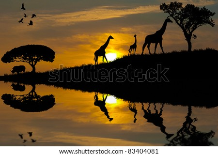 African wildlife sunset. African safari illustration card - stock photo