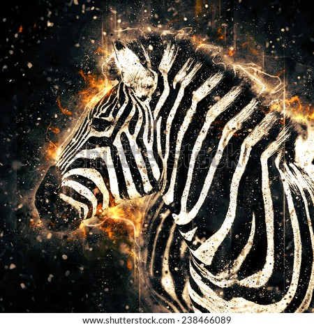 African zebra illustration with fire - stock photo