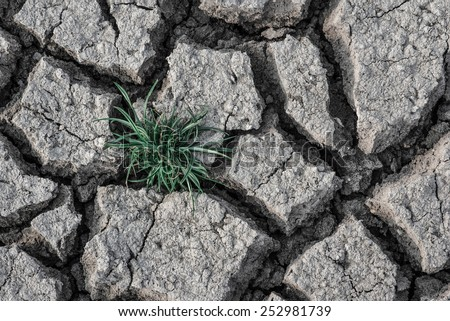 After the drying of the soil surface. - stock photo