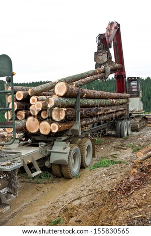 After the log truck trailer is secured to the truck hitch, the loader starts loading the truck and trailer combination. - stock photo