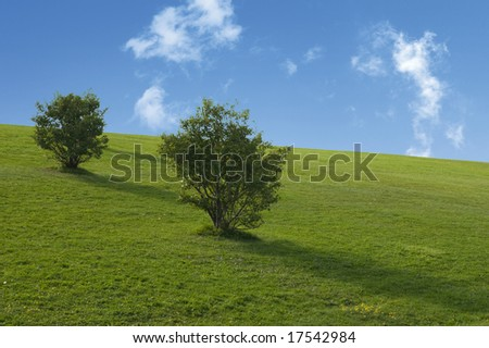 afternoon at Milliken park, Markham, Ontario - stock photo