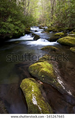 Afternoon light on the Middle Prong of the Little River, Great Smoky Mountains National Park, Tennessee. - stock photo