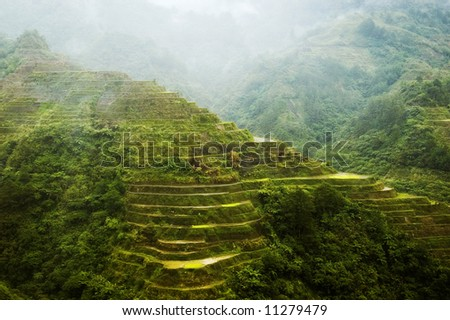 Afternoon rain in Banaue Rice Terraces