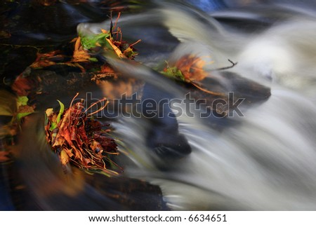 Against stream - stock photo