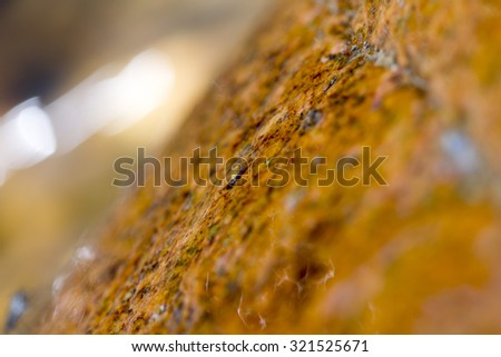against the backdrop of the current water and stone macro - stock photo