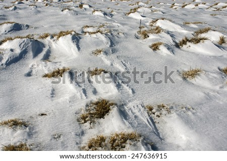 Against the background of strong frosts and snowfalls in the Ukrainian Carpathians form a solid deep snow that the wind, storms and blizzards converted to the scenic natural patterns like beautiful  - stock photo