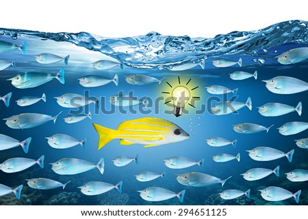 against the stream fish concept - stock photo