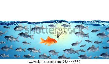 against the stream innovation concept - goldfish - stock photo