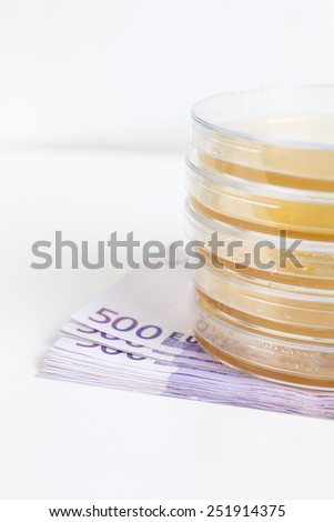 Agar jellies with bacteriums on 500 Euro notes - stock photo