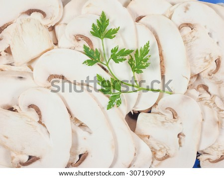 Agaricus bisporus aka champignons mushrooms useful as a background - stock photo