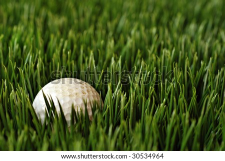 Aged and dirty golf ball in tall grass.  Macro with shallow dof.  Selective focus on ball. - stock photo