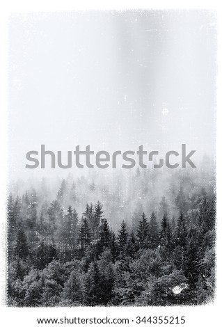 Aged and textured vintage print of an evergreen alpine forest enveloped in swirling mist - stock photo