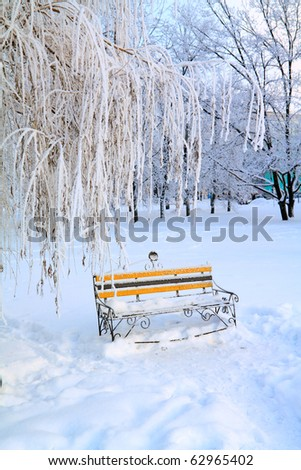 aging bench in winter park - stock photo