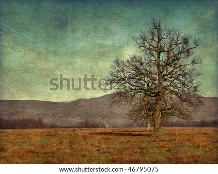 aging nature rural photography - stock photo