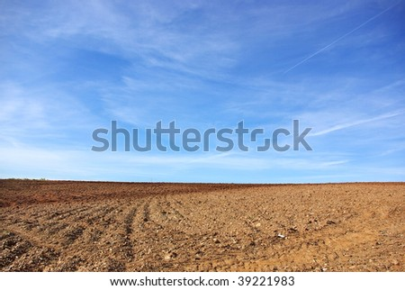 Agricultural Background. - stock photo