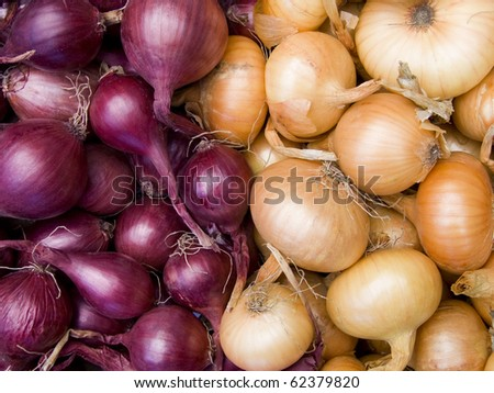 Agricultural background, a pile of beautiful bulb onions - stock photo